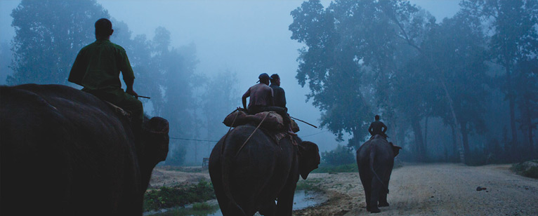 mahout_documentaire3
